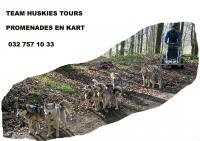 Team_huskies_tours_8.jpg